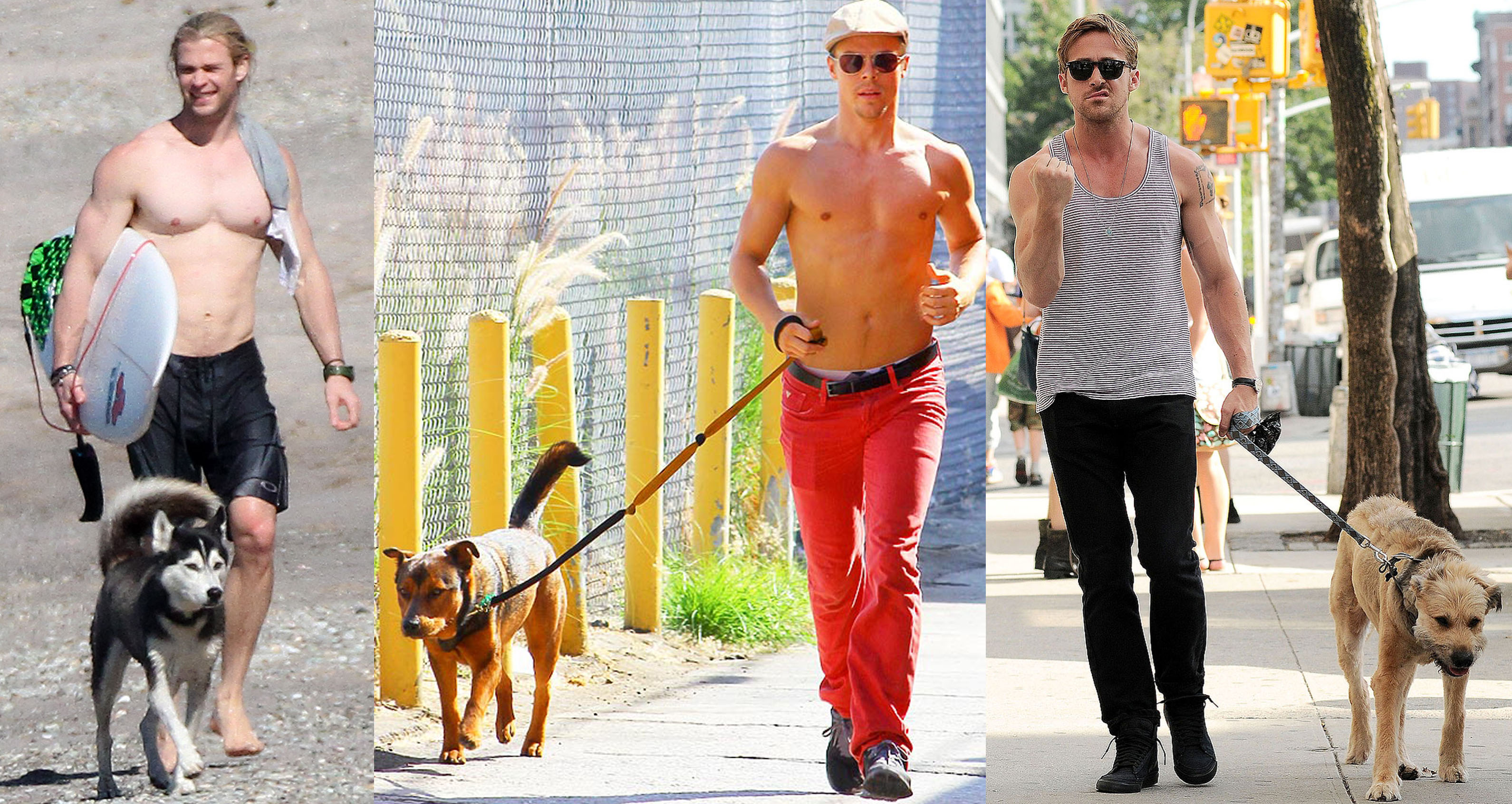 Guys and The Dogs