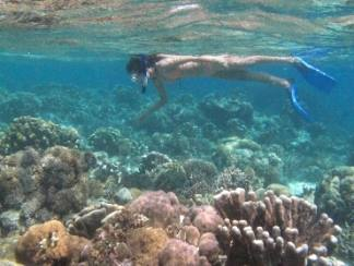 Safety Tips Before Snorkeling